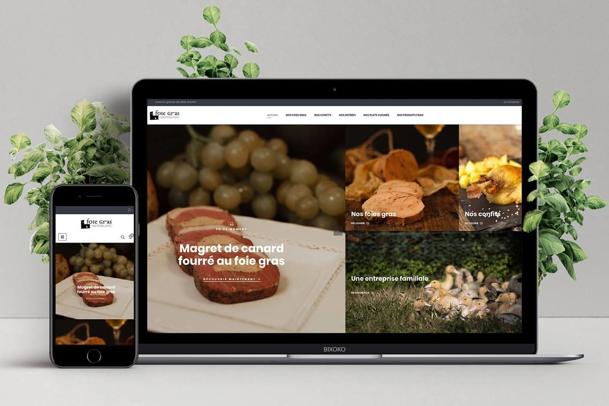 77bfec6ca80a92 BIXOKO   Création Site internet   e-commerce   Pays Basque